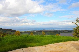 Вилла с видом на Боденское озеро