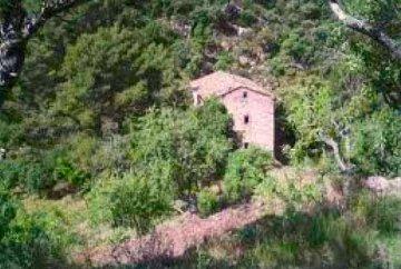 200 га леса пробкового дуба и загородный дом в Испании