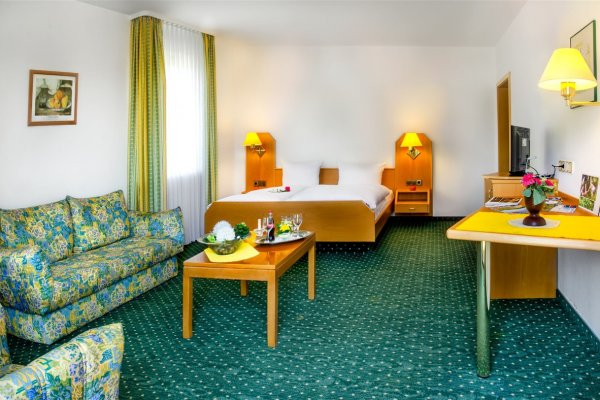 Хорошо идущий отель с расширением проекта в Шварцвальде